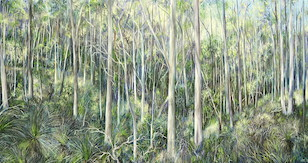 2pm July, Upper Centre Road, Moggill Conservation Park. 2008. 66cm x 122cm. Oil on canvas. SOLD.