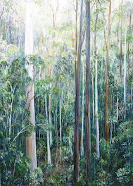 4.30pm May, Off Mill Road, Moggill Conservation Park. 2011. 84cm x 61cm. Oil on canvas. SOLD.