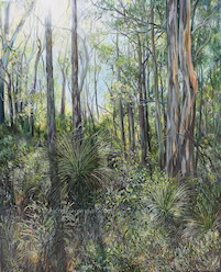 7 30am May, Upper Centre Road, Moggill Conservation Park. 2013. 76cm x 61cm. Oil on canvas. SOLD.