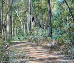 8am August, Upper Centre Road, Moggill Conservation Park. 2014. 106cm x 92cm. Oil on canvas. SOLD.