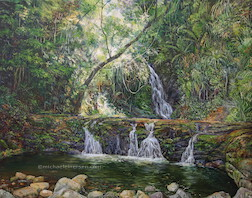 2pm January, Elabana Falls, Lamington National Park. 2016. 84cm x 66cm. Oil on canvas. SOLD.