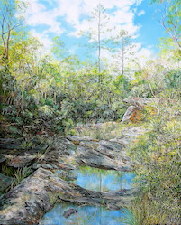 J. C. Slaughter Falls, Mt Cootha Forest Park. 2015. 122cm x 92cm. Oil on Canvas. SOLD.