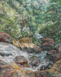 9:30am April, Above Ngarri-dhum Falls, Springbrook National Park. 2017. 84cm x 66cm. Oil on canvas. SOLD.