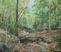 9:30am January, Little Ugly Creek Branch, Moggill Conservation Park. 2017. 56cm x 67cm. Oil on canvas. SOLD.