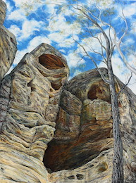 11am July, White Rock, White Rock – Spring Mountain  Conservation Estate . 2015. 120cm x 70cm. Oil on canvas. SOLD.