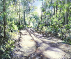 5pm Nov, Lower Centre Rd, Moggill Conservation Park. 2006. Oil on canvas. SOLD.